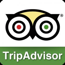 Trip advisor и всеми известный логотип
