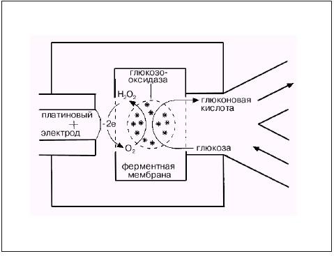 kak-vibrat-glukometr 6