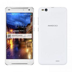 Amigoo R300