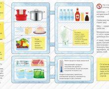 Какая температура должна быть в холодильнике: 6 секретов свежести продуктов