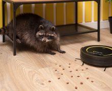 12 советов, как выбрать робот-пылесос для квартиры