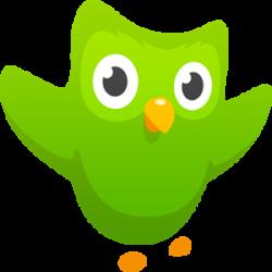 Логотип программы Duolingo